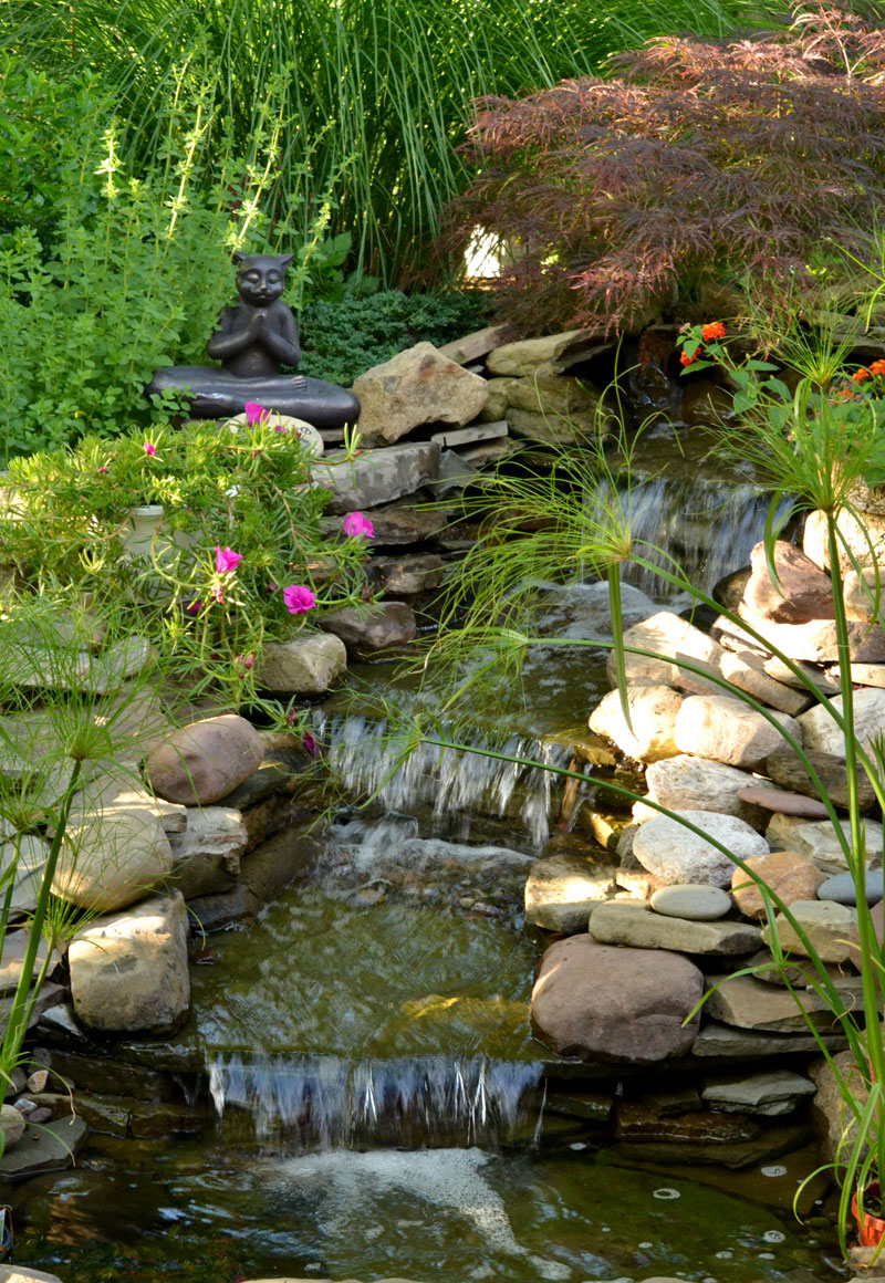 waterfall in Hamburg NY garden