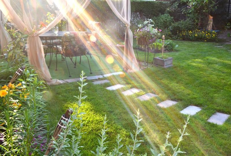 evening sun on gauzy tent in backyard in Buffalo