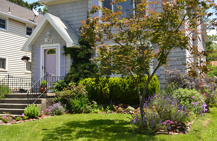 front garden in Snyder NY
