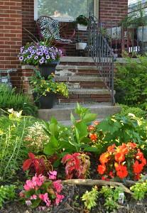 front garden on Samuel Capen Garden Walk in Buffalo