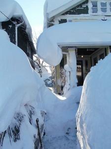 path to front door in Snowvember storm 2014