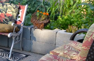 raised bed made with cinder blocks
