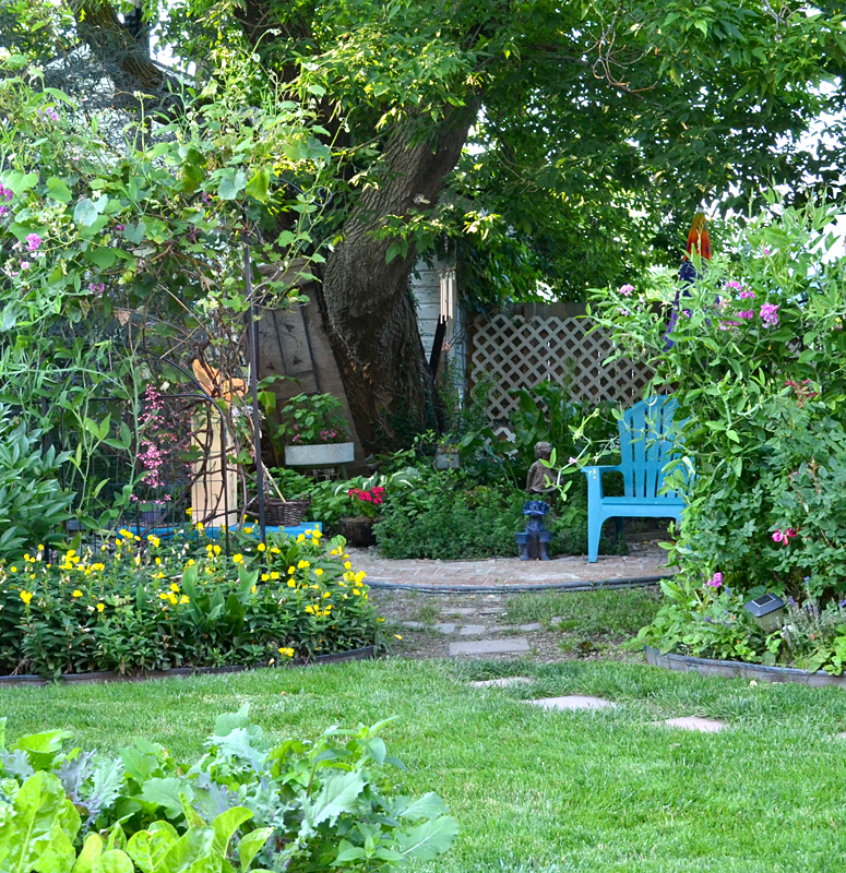 shady garden in Buffalo NY