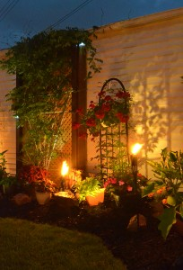 side garden on Ken-Ton night