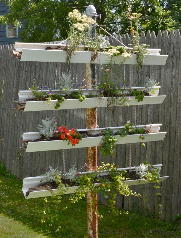rain gutter vertical garden in Buffalo NY