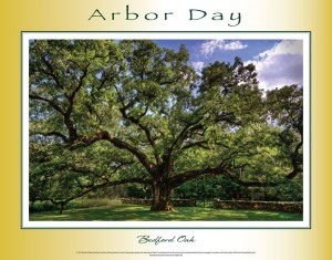 Arbor Day poster 2015