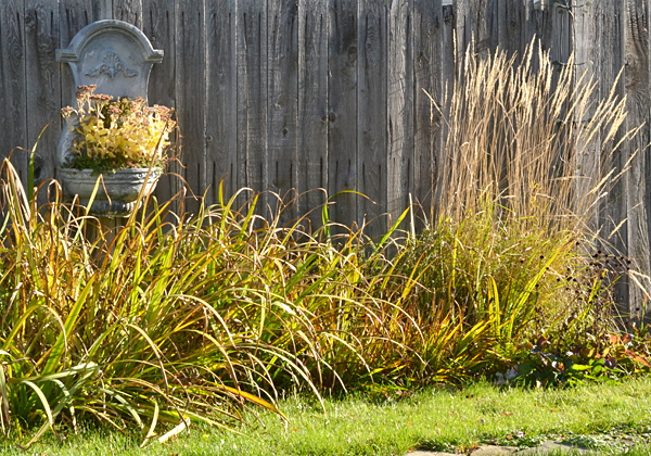 Take photos of your garden now. It will help you as you plan for spring. Photo by Connie Oswald Stofko
