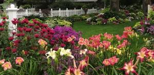 garden courtesy Schmith