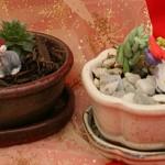 mini Christmas gardens