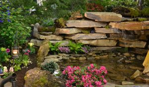 waterfall at Plantasia by A Growing Business