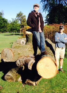 Shayne Dark and team member with huge tree trunk