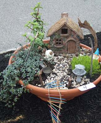 fairy garden at Williamsville Garden Walk