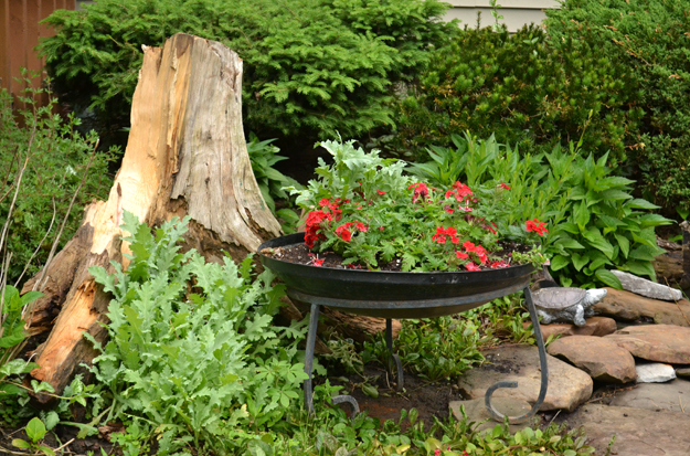 fire pit used as a planter in Lancaster NY