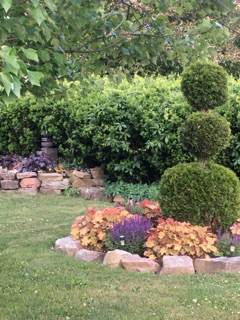 topiary in Medina, NY