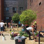 gardeners at International School 45 in Buffalo