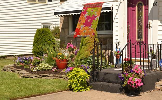 front garden Snyder CleveHill