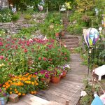 garden on steep hill in South Buffalo