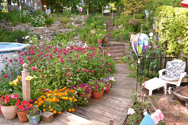 garden on steep hill in South Buffalo