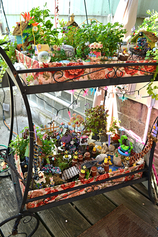 fairy gardens on tea cart in Buffalo