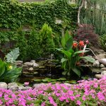 gardens around water feature in West Seneca NY