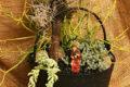 halloween-miniature garden in cauldron