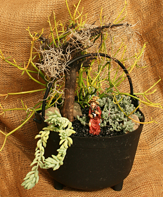 halloween-miniature garden in cauldron