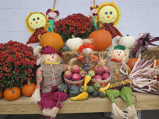 autumn display with pumpkins