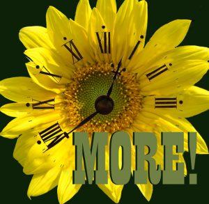 floral clock illustration for talk on 45 more gardening tips
