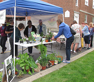 plant and seed exchange by Samuel Capen Garden Walk