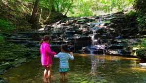 Owens Falls Sanctuary in Town of Aurora NY