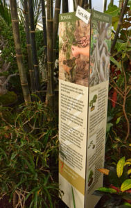 new signs in Asian exhibit at Buffalo and Erie County Botanical Gardens
