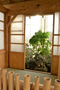 tea house at Buffalo and Erie County Botanical Gardens