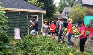 raking by Grassroots Gardens in Buffalo NY