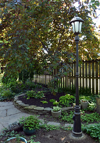 circular garden bed and street light in Buffalo backyard