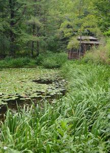 pond in Holland NY on Open Gardens