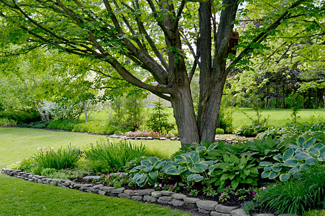 garden beds in Springville, New York
