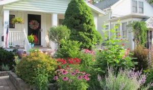 garden in front yard in Buffalo New York