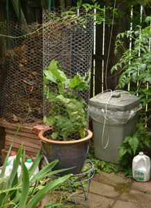 rain barrel and composter in Buffalo