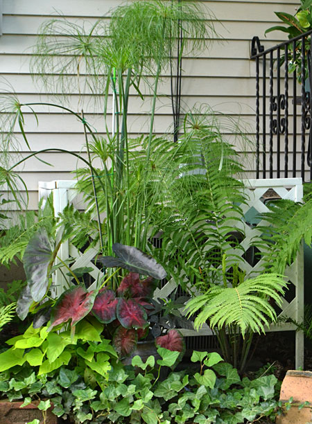 plants disguise air conditioner