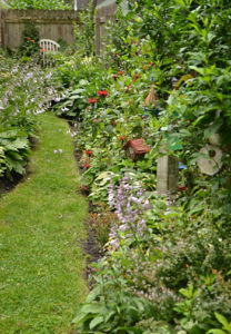 garden between house and fence in Hamburg, NY