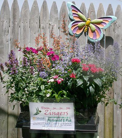 Go Garden from Mischler's in Williamsville