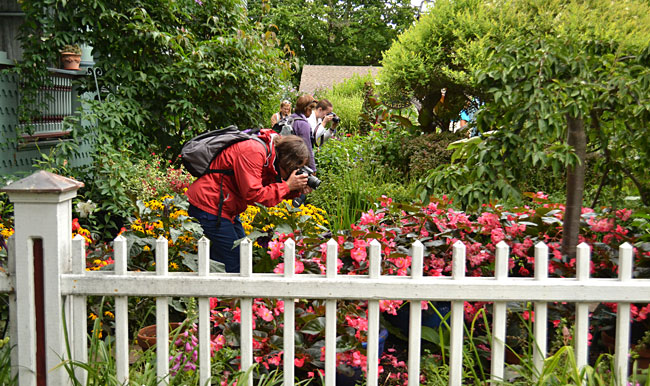 photographers in Buffalo garden