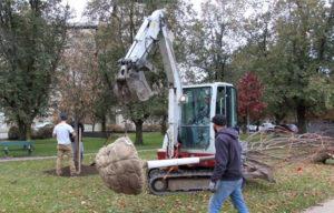machine moving tree