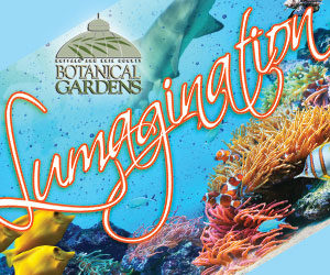 Graphic for Lumagination from Buffalo Botanical Gardens