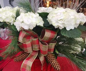 white hydrangeas at Lockwood's