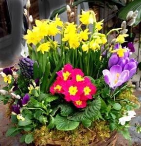 basket with spring flowers courtesy Lockwood's