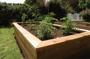 raised bed planter box from Tripi's