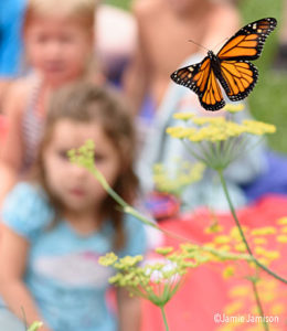 monarch butterfly with children in background