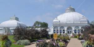 Buffalo and Erie County Botanical Gardens in summer