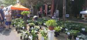 Lewiston GardenFest